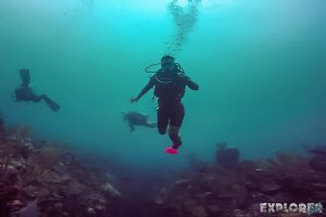 Belize Caye Caulker Scuba Diving Backpacker Backpacking Travel
