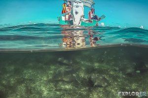 Belize Caye Caulker Snorkel Stingray Backpacker Backpacking Travel