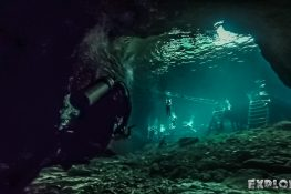Mexico Tulum Scuba Dive Divesite Dos Ojos Cenote Backpacking Backpacker Travel