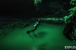 Mexico Tulum Scuba Diving Divespot Angelita Cenote Backpacking Backpacker Travel