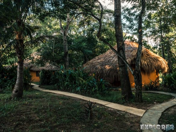 Palenque El Colombre Backpacking Backpacker Travel