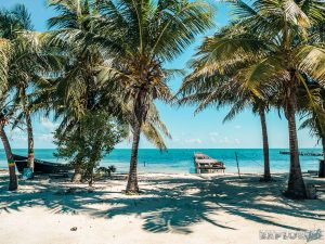 Belize Caye Caulker Sunrise Palmtrees Backpacking Backpacker Travel