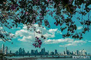 Panama City Casco Viejo Flowers Skyline Backpacker Backpacking Travel