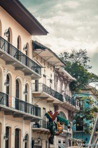 Panama City Casco Viejo Parrots Backpacking Backpacker Travel