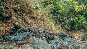 Panama El Valle De Anton Sendero Hacia La India Dormida Backpacking Backpacker Travel
