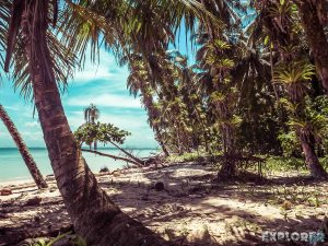 Panama Bocas Del Toro Isla Zapatilla Beach Backpacking Backpacker Travel