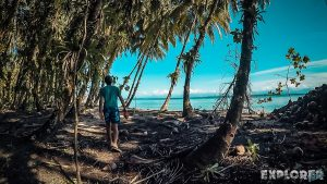 Panama Bocas Del Toro Isla Zapatilla Palmtrees Backpacking Backpacker Travel