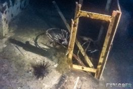 Panama Bocas Del Toro Scuba Nightdive Lionfish Wreck Divesite Lunchbox Backpacking Backpacker Travel