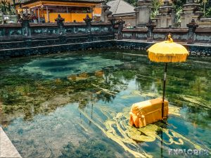 Indonesia Bali Tirta Empul Holy Water Pool Backpacking Backpacker Travel