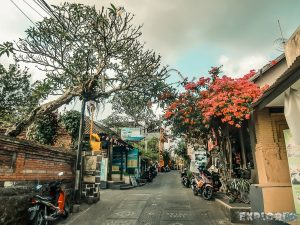 Indonesia Bali Ubud Jalan Kajeng Signature Street Backpacking Backpacker Travel