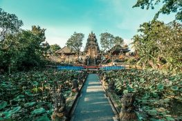 Indonesia Bali Ubud Taman Saraswati Backpacking Backpacker Travel