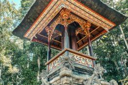 Indonesia Bali Sangeh Monkey Forest Backpacker Backpacking Travel