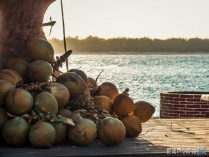 Indonesia Gili Trawangan Sunrise Beach Coconut Backpacker Backpacking Travel