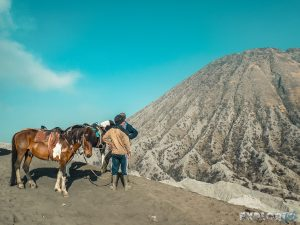 Indonesia Probolinggo Mount Bromo Caldera Horse Backpacking Backpacker Travel