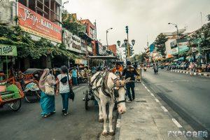 Indonesia Yogyakarta Backpacking Backpacker Travel 4