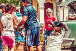 cuba vinales pineapples sale backpacker backpacking travel