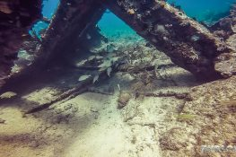cuba varadero beach scuba dive neptuno wreck backpacker backpacking travel