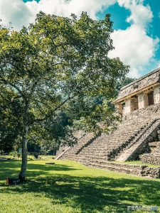 Mexico Palenque Temple Backpacking Backpacker Travel