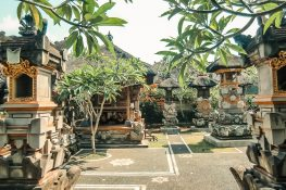 Indonesia Ubud Ekas Homestay Backpacking Backpacker Travel