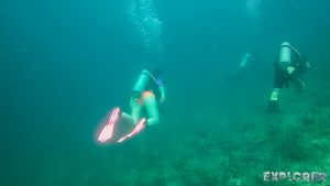 Panama Bocas Del Toro Scuba Diving Divespot Casa Verde Backpacking Backpacker Travel