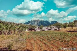 cuba vinales farm backpacker backpacking travel