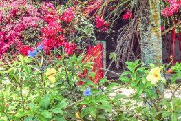 cuba vinales garden backpacker backpacking travel