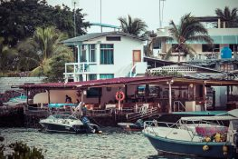 Ecuador Santa Cruz Galapagos Backpacking Backpacker Travel