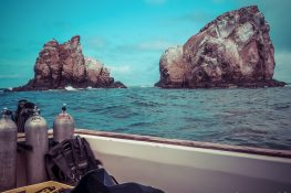 Ecuador Santa Cruz Galapagos Gordon Rocks Scuba Diving Backpacking Backpacker Travel