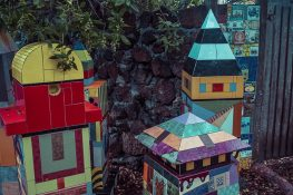 Ecuador Santa Cruz Galapagos Jardin Ceramica Backpacking Backpacker Travel