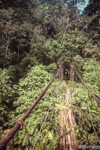 Ecuador Tena Jondachi River Rafting Bridge 3