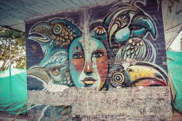 Ecuador Tena Mural backpacker backpacking travel