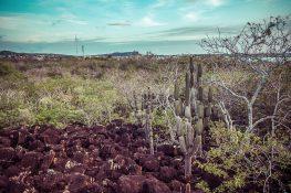 Galapagos San Cristobal Backpacking Backpacker Travel