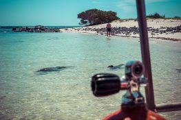 Galapagos San Cristobal Beach Backpacking Backpacker Travel