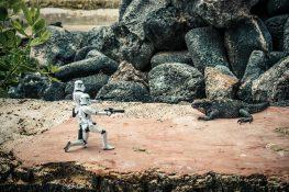 ecuador isabela galapagos iguana surfing stormtrooper backpacker backpacking travel