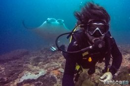 Indonesia Nusa Penida Manta Ray Scuba Diving ExplorerVibes Backpacking Travel