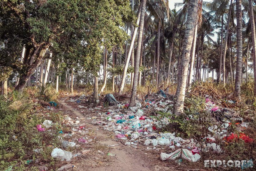Indonesia Nusa Penida Trash Palms Backpacking Backpacker Travel