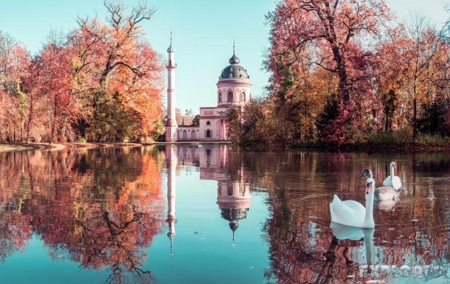germany schwetzingen schlossgarten autunm mosque swan backpacking backpacker travel