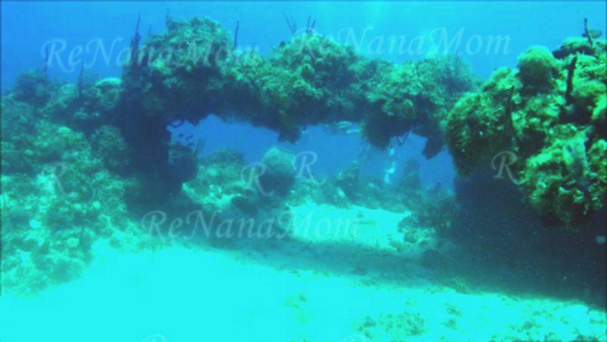 Jamaica Negril Arches Dive Spot 2