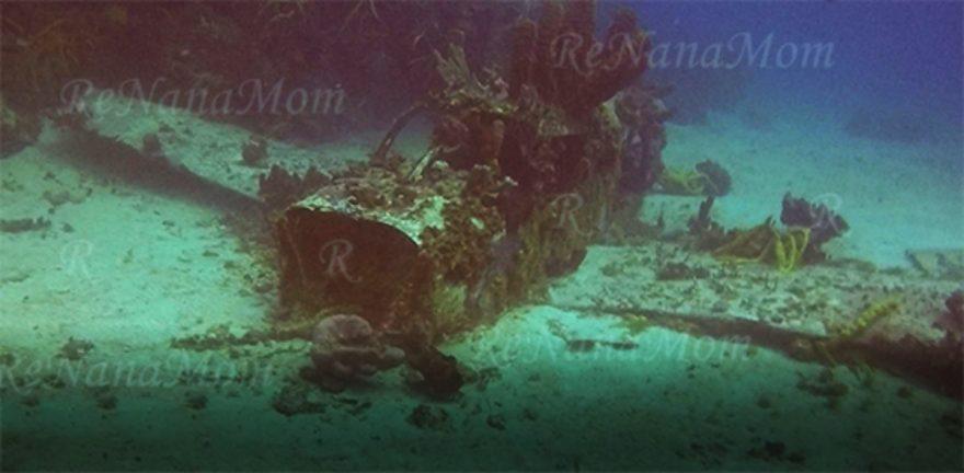Jamaica Negril Shallow Plane Dive Spot